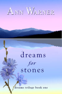 Cover Image for Dreams for Stones